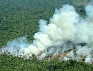 Com um aumento de 587% no número de focos de incêndio, Acre decreta estado de alerta ambiental