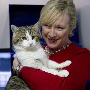 Claire Horton, presidente da Battersea Dogs and Cats Home, em Londres, segura o gato Larry antes dele ser entregue à residência oficial do governo britânico, em fevereiro de 2011