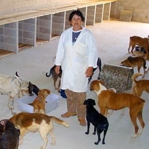 Abrigo de cães que funciona em colaboração com a delegacia de Campinas