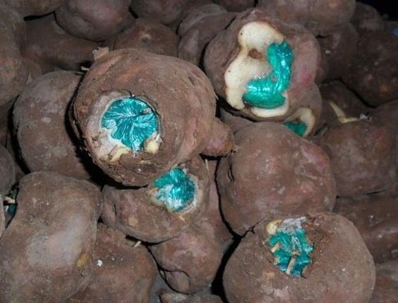 Polícia encontra 27 kg de cocaína escondida em batatas; veja outros esconderijos