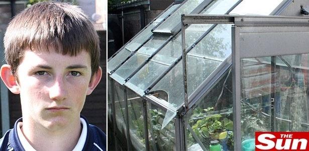 O pequeno meliante britânico e a janela da estufa quebrada
