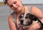 Cachorro que corria atrás de bolinha é resgatado em rio britânico