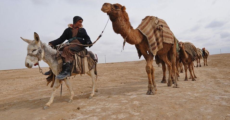Jovem afegão passeia com seus camelo perto da província de Balkh Siah Gerd, no Afeganistão