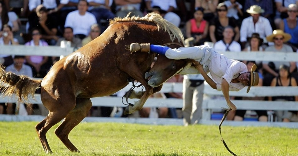 Vaqueiro &#233; jogado fora da montaria de um cavalo xucro durante o Festival Patria Gaucha, no Uruguai