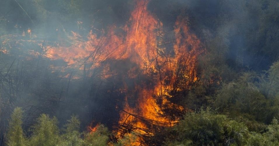Incêndios florestais queimam as encostas do monte Quênia, no Quênia. Acredita-se que o fogo no segundo pico mais alto da África, com 5,199 metros, tenha sido provocado caçadores ilegais
