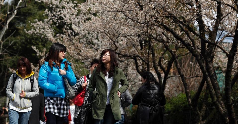 hinesas caminham ao lado de árvores de cerejeira em parque em Xangai