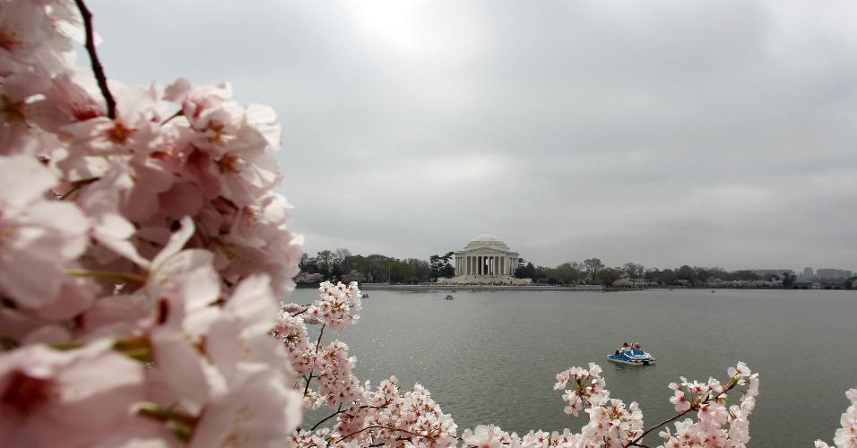 Barco é visto ao logo da Bacia das Marés, em Washington (EUA), em meio as flores de uma cerejeira
