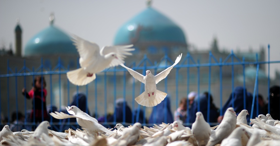 Pombas voam sobre pra&#231;a em &#225;rea pr&#243;xima ao templo Hazrat Ali, em Mazar-i Sharif, no Afeganist&#227;o