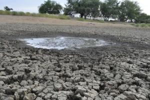Seca castiga quase todos os Estados do Nordeste; cidades da Bahia, como Sento Sé, são as mais afetadas
