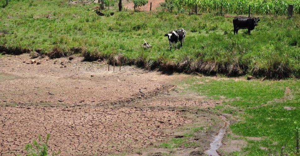 Moradores da cidade de Machadinho, no Rio Grande do Sul, estão sofrendo com a estiagem no município devido à falta de chuva na região