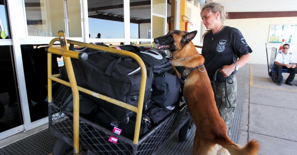 Polícia Federal realiza operação no aeroporto de Macaé, no norte fluminense, usando cães treinados