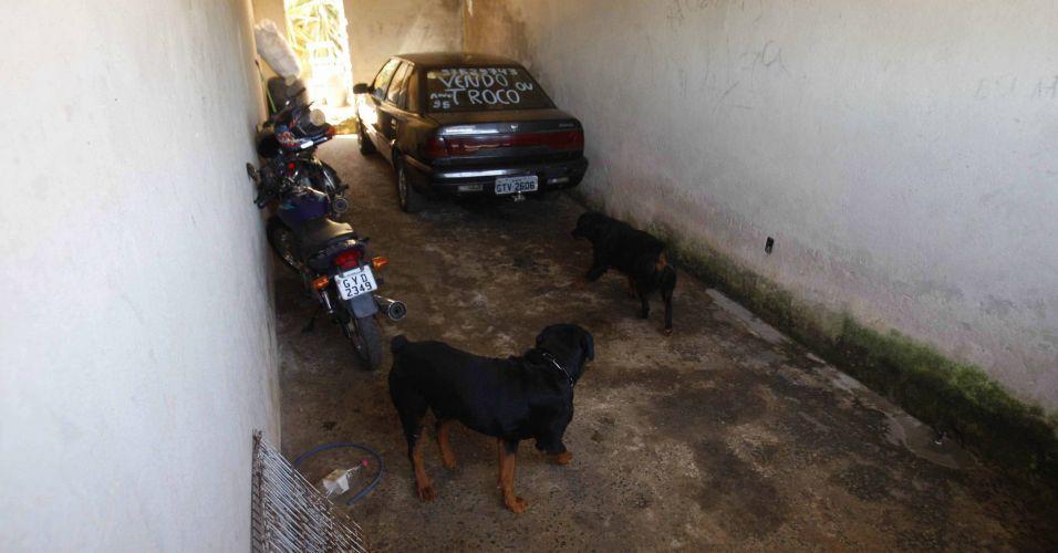 7.julho.2010 Polícia revista casa onde estaria o corpo de Eliza Samudio, ex-namorada do goleiro Bruno, do Flamengo. A casa fica na cidade de Vespasiano região metropolitana de Belo Horizonte) e pertenceria a um ex-detetive. Até o momento, foram retirados do local dois rotweiller, sete filhotes da mesma raça, e um cachorro vira-lata. Os agentes chegaram até o lugar a partir do depoimento do adolescente de 17 anos apreendido ontem na casa de Bruno, no Recreio, e que confessou participação no sequestro da jovem
