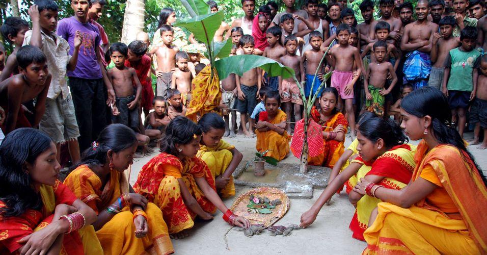 Casamento de rãs em Bangladesh