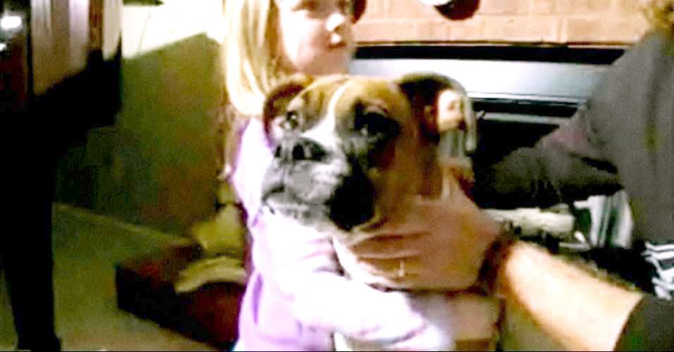 Boxer salva família nos EUA