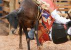 Crianças tentam virar peão sobre carneiro