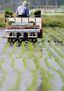 Yuriko Nakao - 01.jun.2008/ Reuters