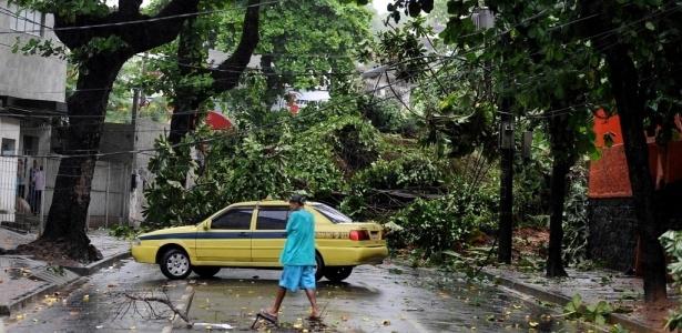 Queda de árvore impede o trânsito em rua da Ilha do Governador, no Rio de Janeiro