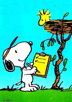 """Os personagens Snoopy e Woodstock, do desenho animado """"A Turma do Charlie Brown"""" - Divulgação"""