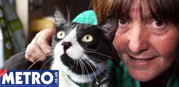 """Alfie, o gatinho desobediente, ao lado de sua dona. """"Meu negócio é sair por aí"""", diz o felino"""