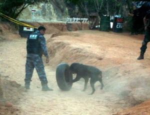 O ex-policial Marcos Aparecido dos Santos, o Bola, treinava policiais em um sítio; mais imagens do caso