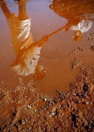 Voluntários são refletidos na lama tóxica, enquanto limpam as ruas de Devecser, na Hungria; veja mais fotos do dia
