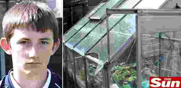 O pequeno meliante britânico e a janela da estufa quebrada - Reprodução/The Sun