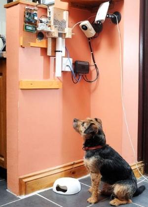 Uma câmera foi instalada na criação para observar se Toby se alimenta direitinho