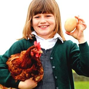 A garotinha Harriet, 8, segura Popples e o superovo