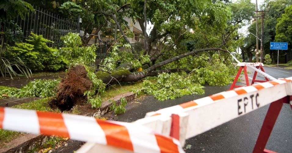 13.mar.2012 - Uma árvore caiu na avenida Lucas de Oliveira, após um rápido temporal que atingiu a cidade de Porto Alegre (RS) no final da tarde desta terça-feira