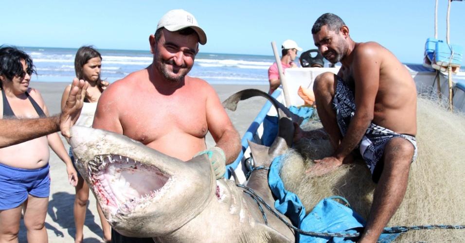 Pescadores encontraram um tubarão de aproximadamente 150 quilos e 2 metros de comprimento em Mongaguá, no litoral sul de São Paulo