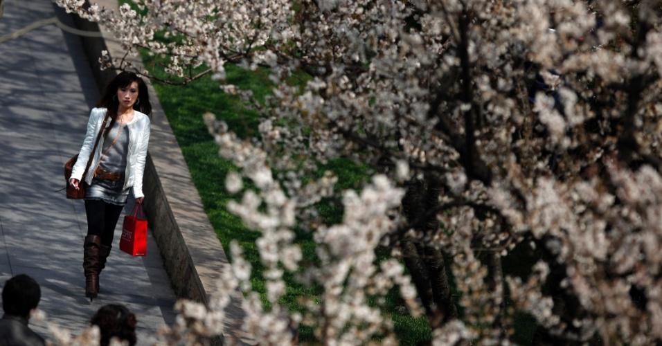 Chinesa caminha em parque cheio de árvores de cerejeira em Xangai