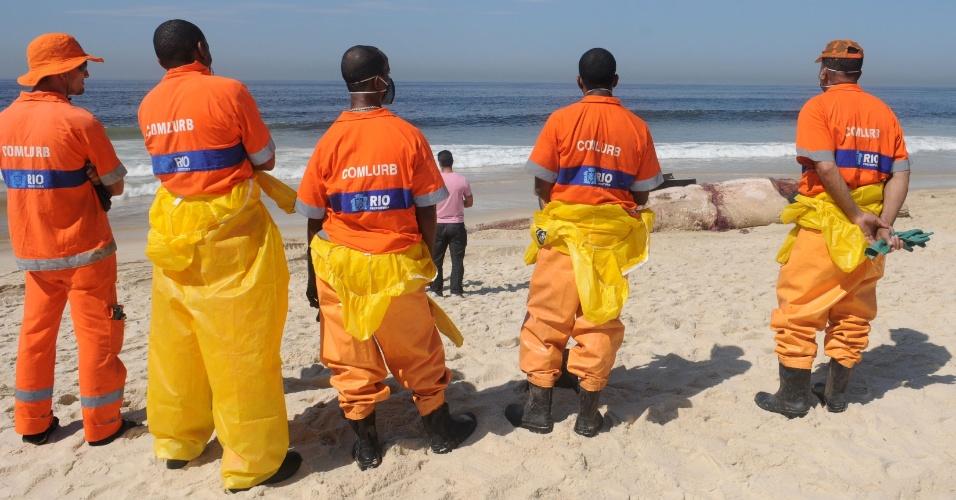 Equipe de limpeza urbana se prepara para retirar corpo de baleia encalhada da praia da Reserva, no Rio de Janeiro