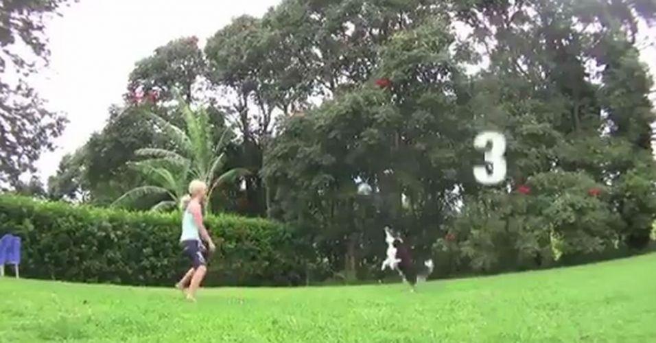 O cãozinho Petey não tem nem mãos, mas sabe muito bem jogar vôlei apenas com o focinho. Em vídeo da internet, ele troca 32 toques com sua dona em menos de 1 minuto