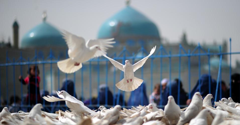 Pombas voam sobre praça em área próxima ao templo Hazrat Ali, em Mazar-i Sharif, no Afeganistão