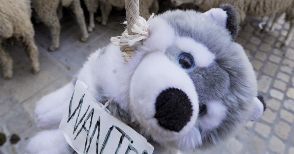 Agricultores reúnem suas cabras e ovelhas e usam lobo de pelúcia para protestar em Brignoles, na França, contra ataques a rebanhos na região