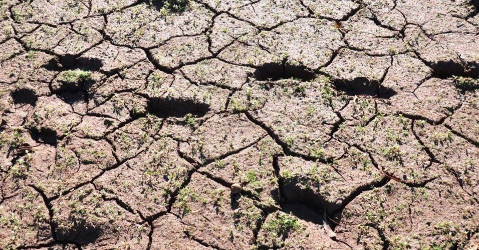 Falta de chuva no Rio Grande do Sul causa prejuízos às lavouras no Estado