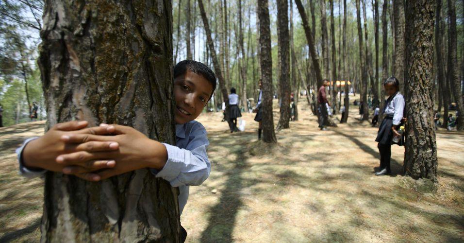 Maior número de pessoas abraçando árvores