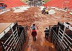 Parque do Peão abriga <BR>o enorme Estádio Polivalente de Rodeio