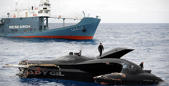 JoAnne McArthur/ Sea Shepherd Conservation Society /AFP