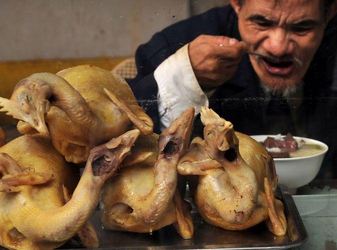 Gripe aviária no Vietnã