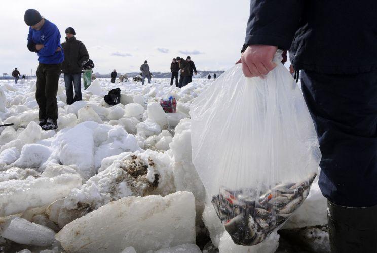 Pescaria na Ucrânia