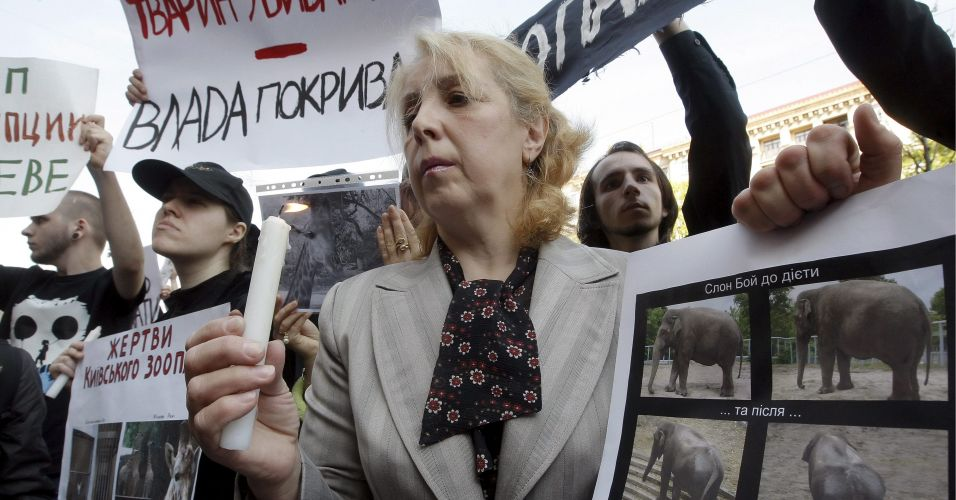 Ativistas em prol dos animais protestam