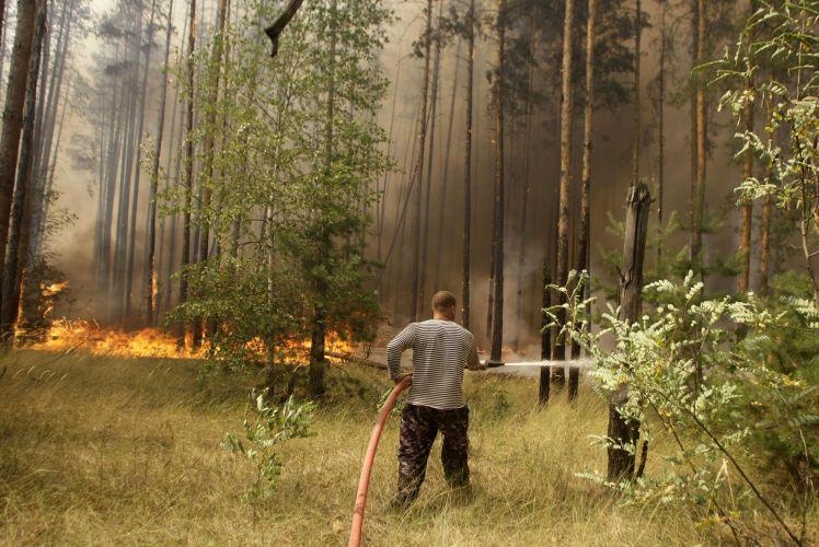 Voluntário trabalha no fogo