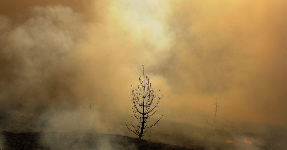 Incêndio na Espanha