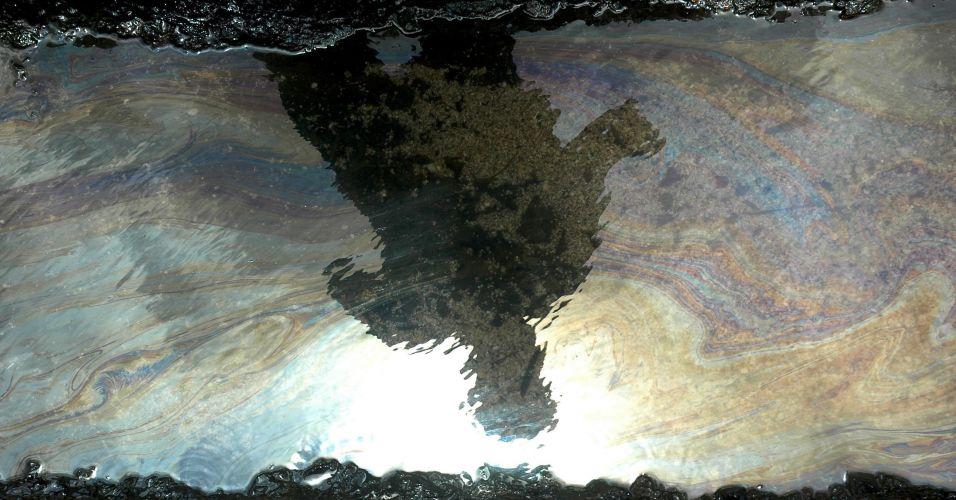 Óleo na Índia