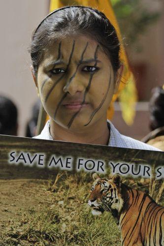 Extinção de tigres