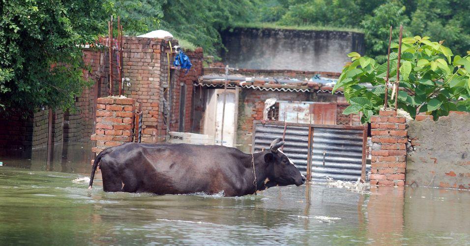 Inundação na Índia