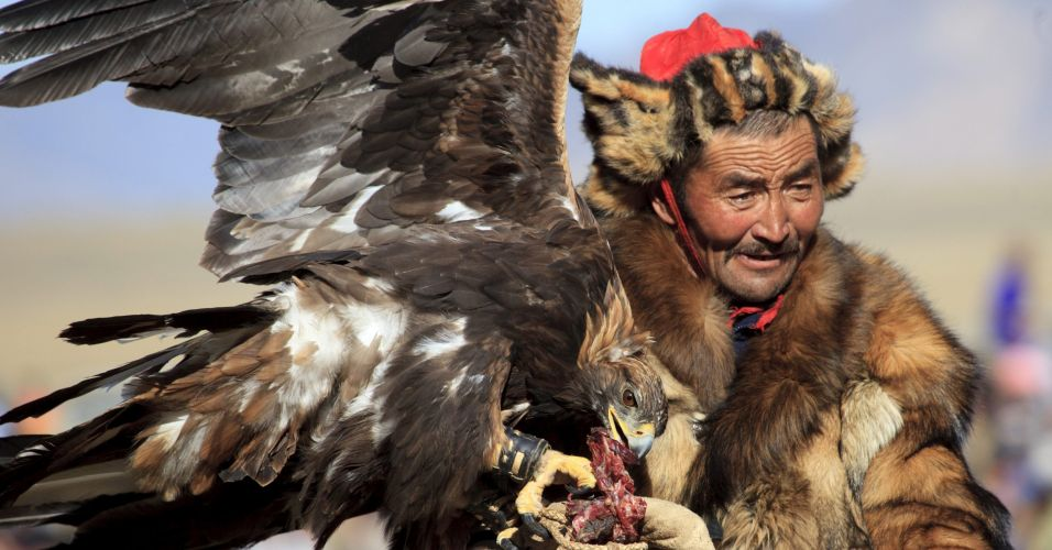 Aguia na Mongólia