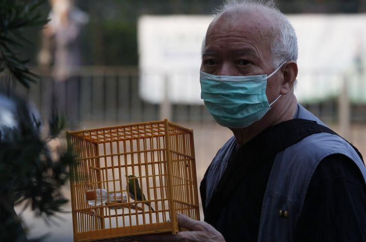 Gripe aviária em Hong Kong