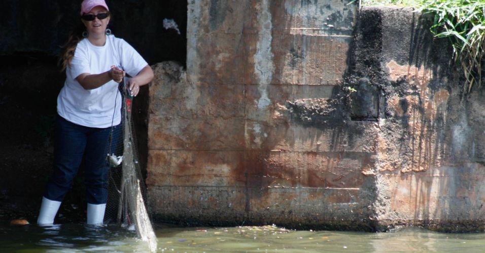 Limpeza do lago do Ibirapuera